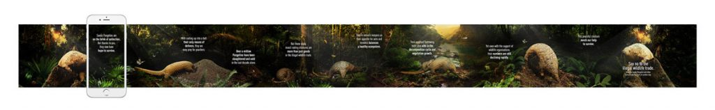 Wildlife-Reserves-Singapore-Web-App-Pangolin-02a
